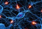 лечение неврозов биорезонансом